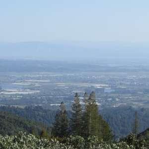 Santa Cruz Bayview Retreat