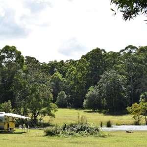 Bunyip's Camp