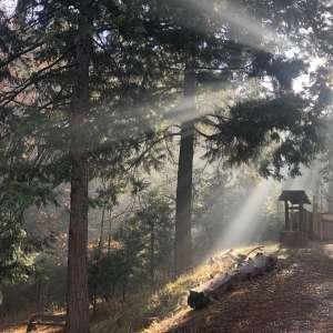Camp Earnest