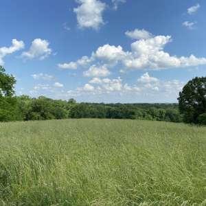 Zack G.'s Land
