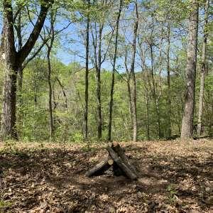 Argo's Camp & Trails