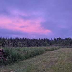 Mackinzi B.'s Land