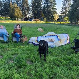 Camping in Oregon Wine Country