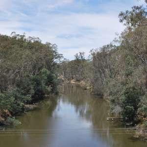 Goulburn River National Park