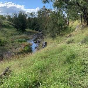 Emu Creek Campsites