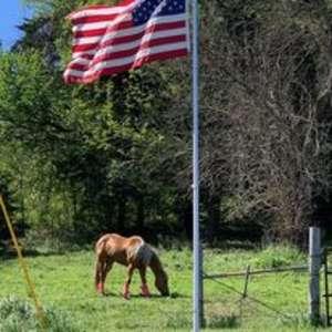 Equine Estates Rustic Ranch