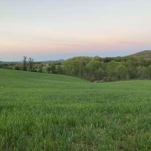 Dayna G.'s Land