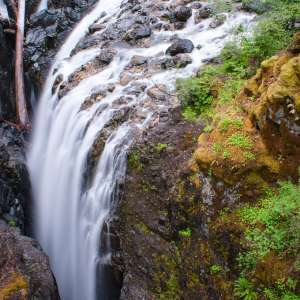 Englishman River Falls Provincial Park