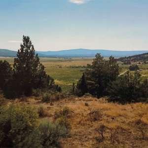 Logan N.'s Land