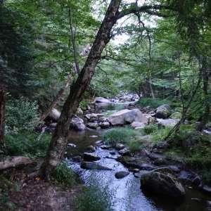 Mont-Mégantic National Park