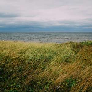 Murray Beach Provincial Park