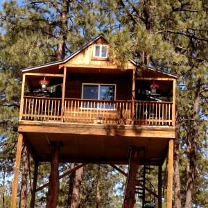 Tatanka Mountain Treehouse