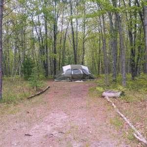 Camp Happy Trees #420