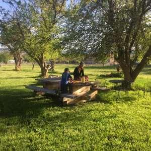 Pinion Farm Homestead