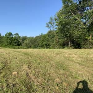 Meredith  V.'s Land