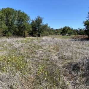 Ashley K.'s Land
