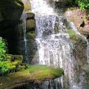 Black Mountain Creek Side