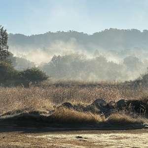 Vivian Lee A.'s Land