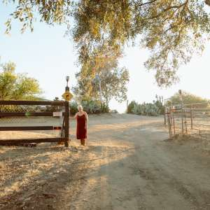 Ability Ranch Camp -