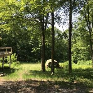 The Cabin Homestead & Farm