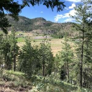 Arrow S Ranch