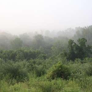 Joshua  H.'s Land
