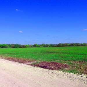 William B.'s Land