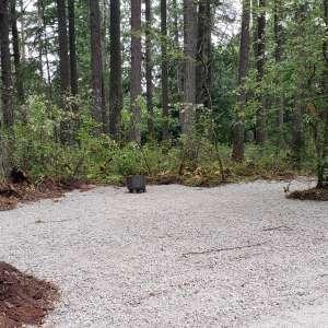 Dean's Campground
