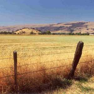 Heather H.'s Land