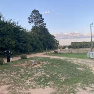 Louvenia D.'s Land