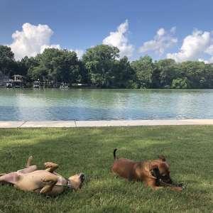 Texas Lakefront Getaway