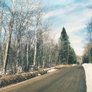 Anna M.'s Land
