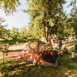 Carrie's Creatures Camping