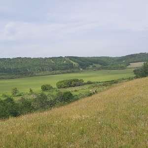 Frits H.'s Land