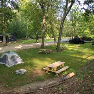 Gold River / camp + cabins