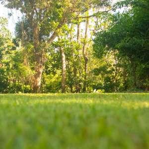 Hotel Villas del Rey Campground
