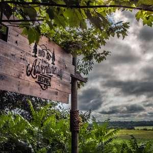 Wild Mountain Winery's Land