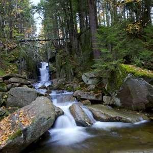 Dixville Notch State Park