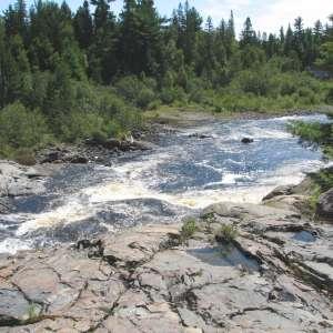 Sturgeon River Provincial Park