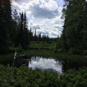 Eskers Provincial Park