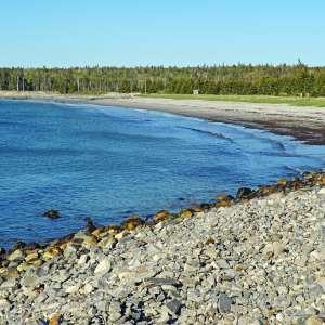 Bayswater Beach Provincial Park