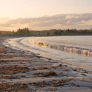 Cleveland Beach Provincial Park