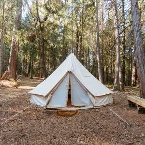 Blue Tent Grove