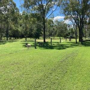 The Farmlet @ Toowoomba