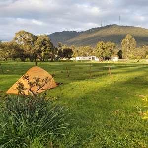 Dandenong Creek Camping