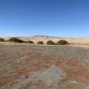 Amanda H.'s Land