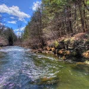 Potic Creek Retreat
