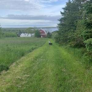 Maggie F.'s Land