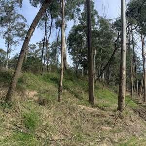 Jila Camp Grounds