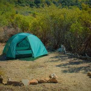 The Camp at Deep Nature